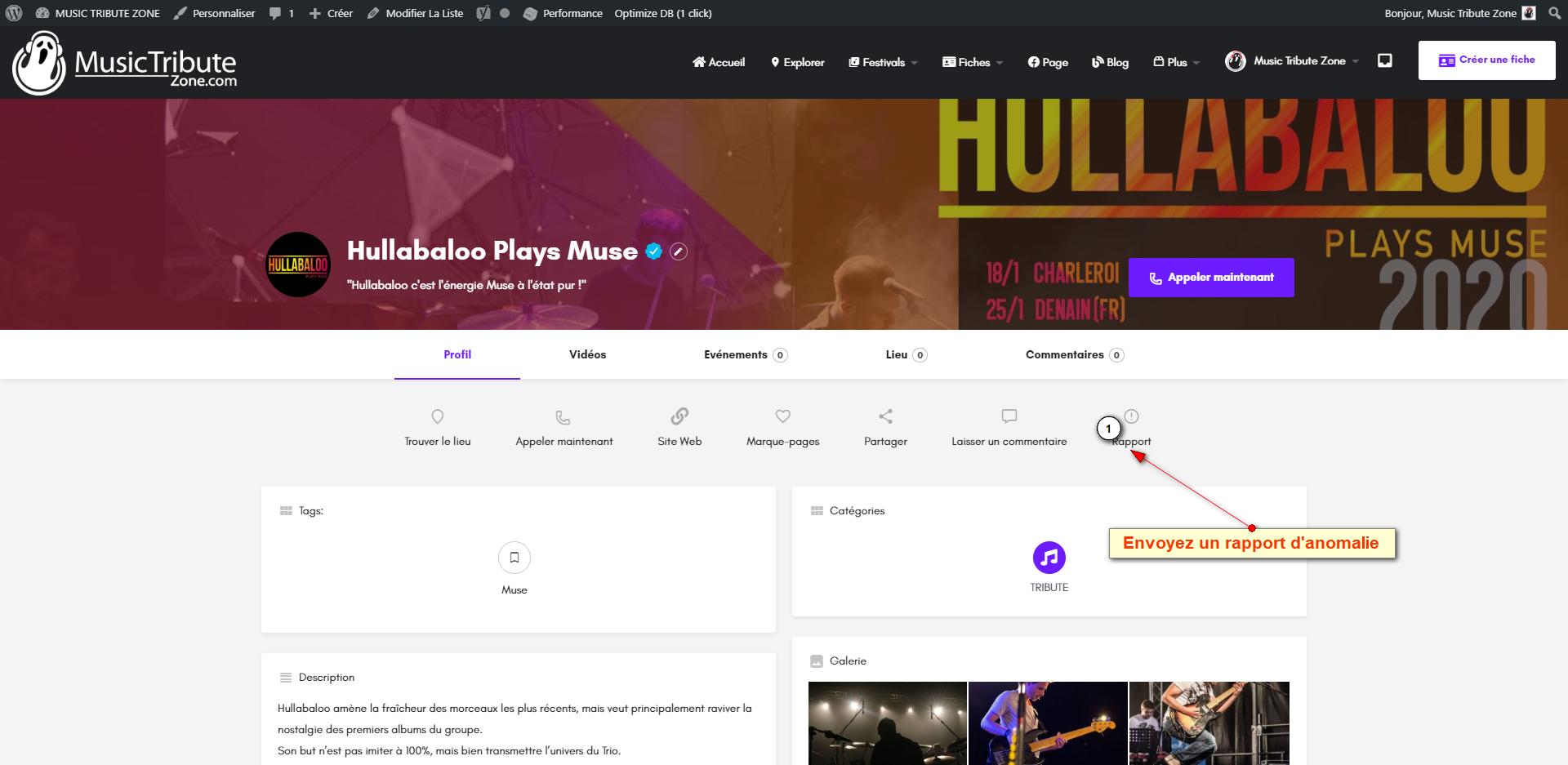 FireShot Pro Screen Capture #016 - 'Hullabaloo Plays Muse I MUSIC TRIBUTE ZONE' - music-tribute-zone_com
